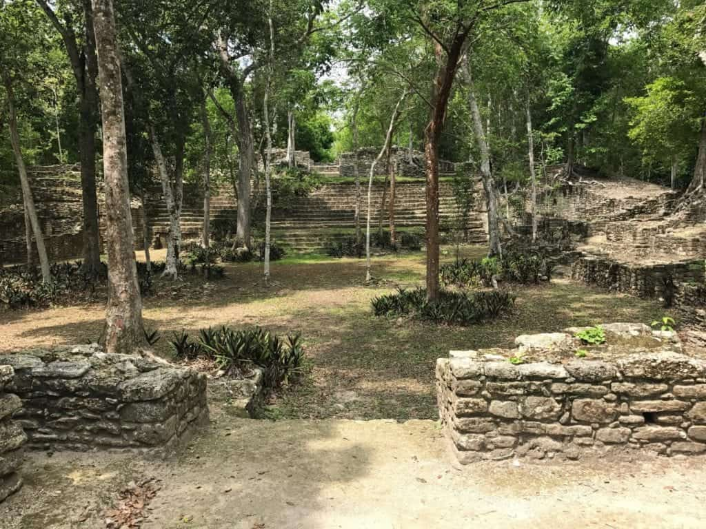 Another short walk through the jungle reveals a different temple complex at Dzibanche. Photo by Bill Thompson.