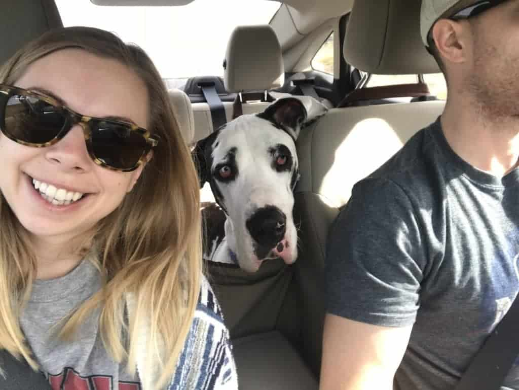 The author and her dog on a road trip.